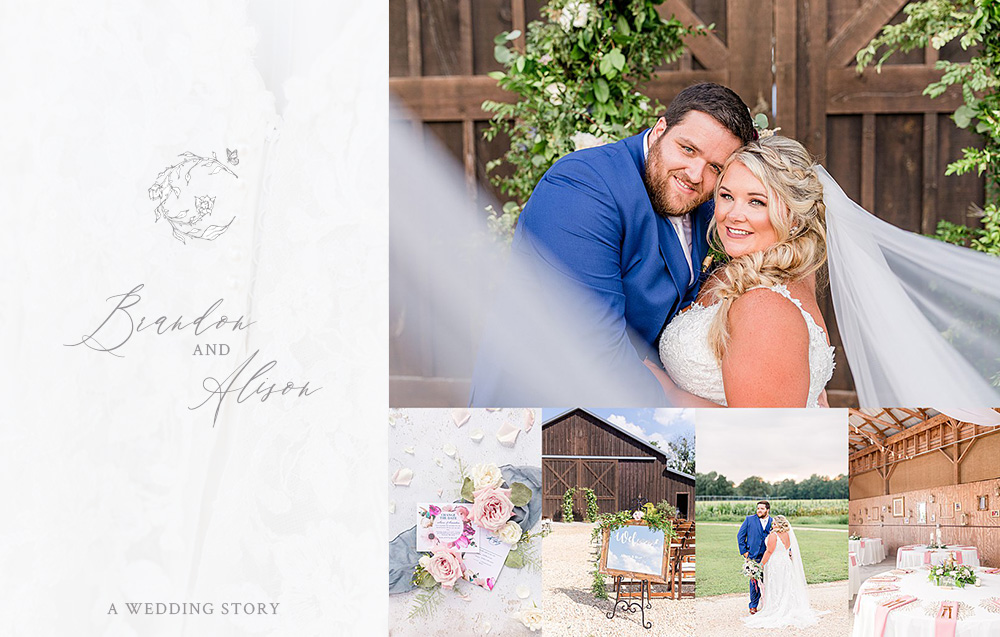 Brandon & Alison's Cohee Farm Wedding